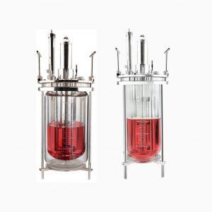 Bioreactor Vessels