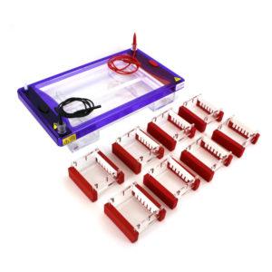 8 Student Agarose Electrophoresis System