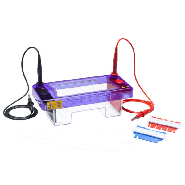 multiSUB Mini, Mini Horizontal Electrophoresis System