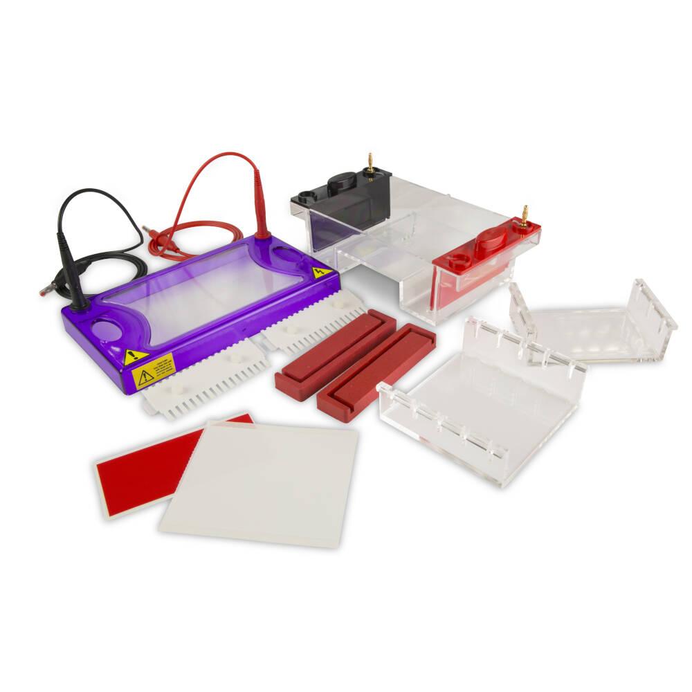 multiSUB Midi, Midi Horizontal Electrophoresis System
