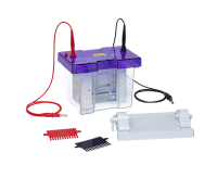 omniPAGE Mini Vertical Protein Electrophoresis System